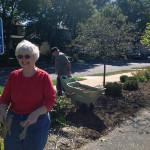 Doreen and Dean spread mulch.